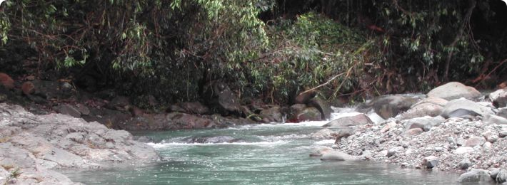 Stream at Luquillo LTER and Experimental Forest